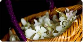 Maui wedding flowers and fresh flower lei for weddings on Maui.