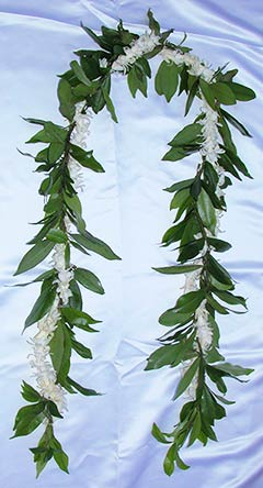 Maile with Tuberose Lei are perfect for gentleman. Fragrant flower lei.