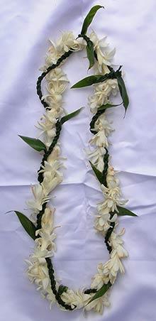 Ti Leaf and Tuberose Maui wedding lei.
