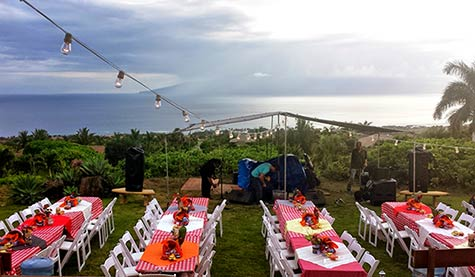 A catered farm wedding in West Maui complete with red and white checkered tablecloths.