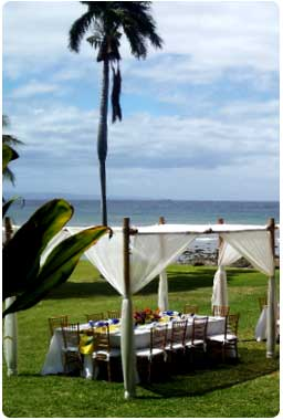 Linen canopied bamboo chuppa by Comfort Zone Maui catering company.