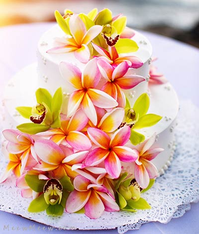 A Maui wedding cake with pink plumeria and lime green orchids.
